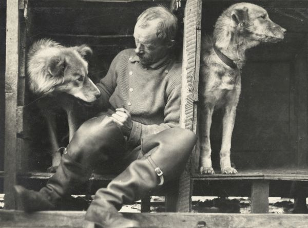 frank wild and sledge dogs on board ship