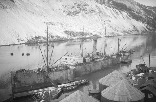 ss coronda leith south georgia
