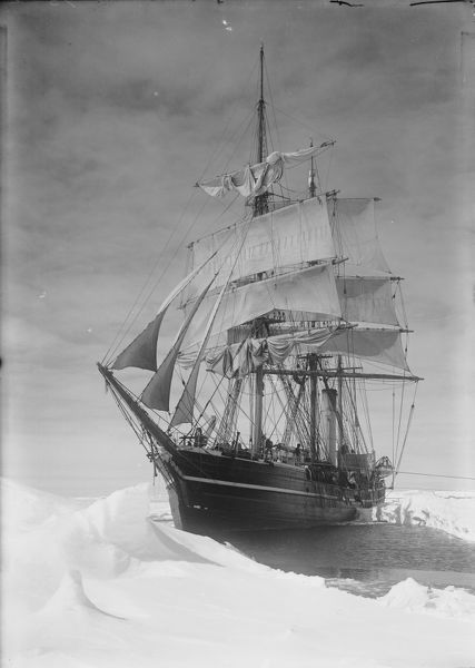 the terra nova held up in the pack ice december