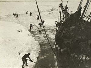 Endeavouring to cut the ship out of the ice, February, 1915