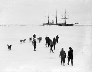 Men and dogs on the ice, Endurance in the background