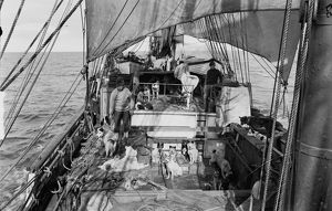 View of deck of Terra Nova with dogs from engine room hatch. January 3rd 1911.