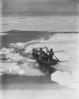 Working the pram (rowing boat) through pack ice to hunt penguins. December 1910