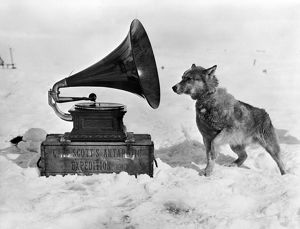 british antarctic expedition 1910 13 terra nova/chris gramophone
