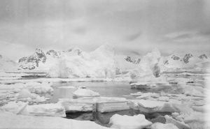 british expedition graham land 1920 22/icebergs waterboat point paradise bay