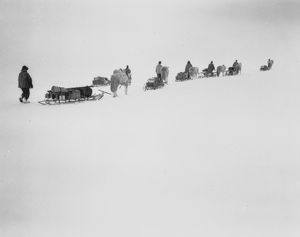 british antarctic expedition 1910 13 terra nova/debenham/ponies