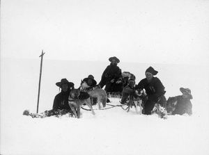 british national antarctic expedition 1901 04/sledge journey mount terror