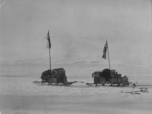 antarctic relief expeditions 1902 04/sledges