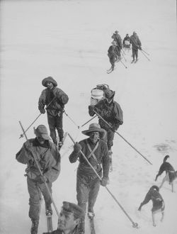 antarctic relief expeditions 1902 04/sledging